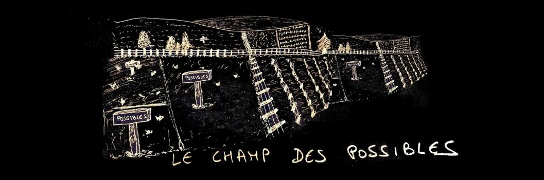Groupe Bleu nuit, Mickael Feugray, Jason Feugray, Faudra bien que ça tienne, chanson française, folk.